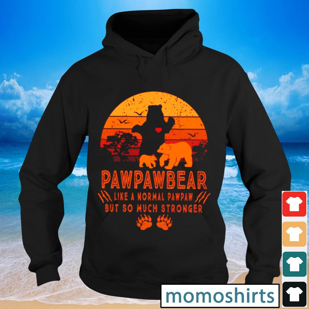 Pawpawbear like a normal pawpaw but so much stronger vintage s Hoodie