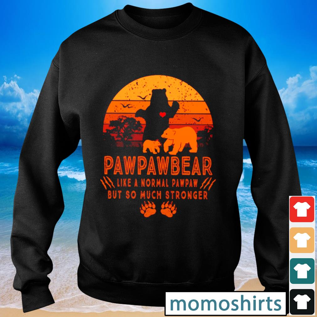 Pawpawbear like a normal pawpaw but so much stronger vintage s Sweater
