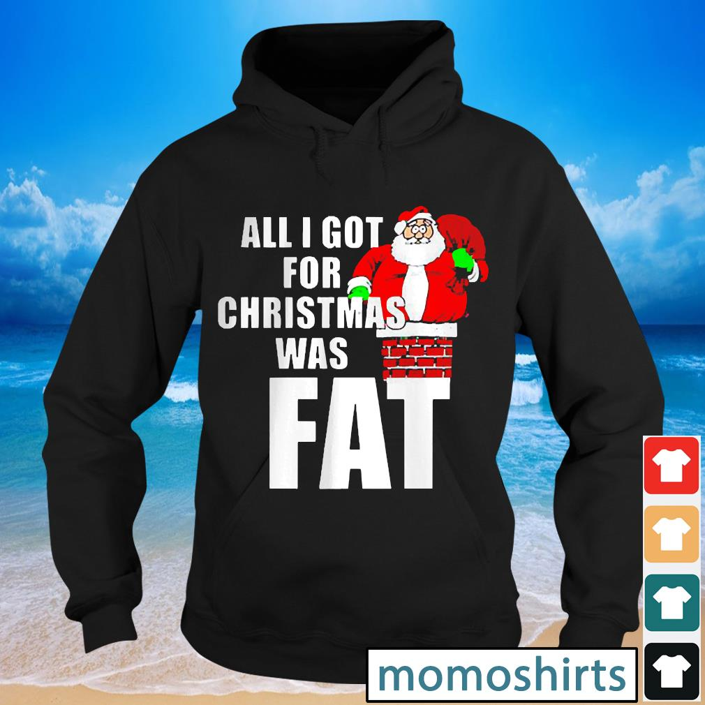 Santa All I Got For Christmas was fat s Hoodie